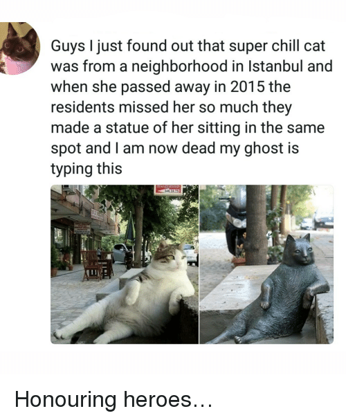 Chill, Ghost, and Heroes: Guys I just found out that super chill cat  was from a neighborhood in Istanbul and  when she passed away in 2015 the  residents missed her so much they  made a statue of her sitting in the same  spot and l am now dead my ghost is  typing this <p>Honouring heroes…</p>