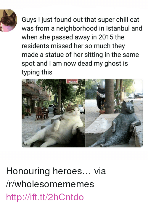 """Chill, Ghost, and Heroes: Guys I just found out that super chill cat  was from a neighborhood in Istanbul and  when she passed away in 2015 the  residents missed her so much they  made a statue of her sitting in the same  spot and l am now dead my ghost is  typing this <p>Honouring heroes… via /r/wholesomememes <a href=""""http://ift.tt/2hCntdo"""">http://ift.tt/2hCntdo</a></p>"""