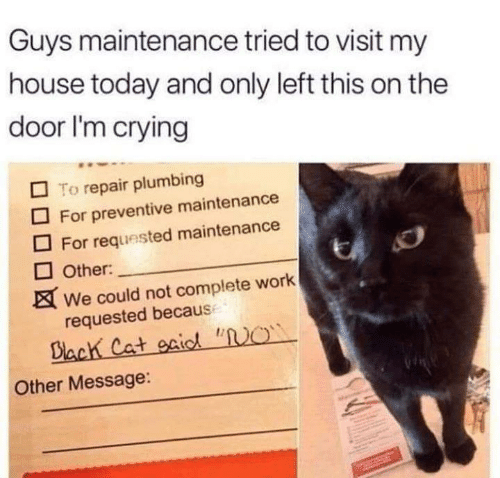 """requested: Guys maintenance tried to visit my  house today and only left this on the  door I'm crying  To repair plumbing  For preventive maintenance  For requested maintenance  Other:  We could not complete work  requested becaus  Biach Cat gaic """"O  Other Message:"""