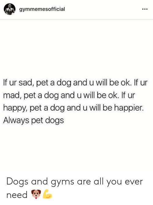 Dogs, Happy, and Mad: gymmemesofficial  If ur sad, pet a dog and u will be ok. If ur  mad, pet a dog and u will be ok. If ur  happy, pet a dog and u will be happier.  Always pet dogs Dogs and gyms are all you ever need 🐶💪