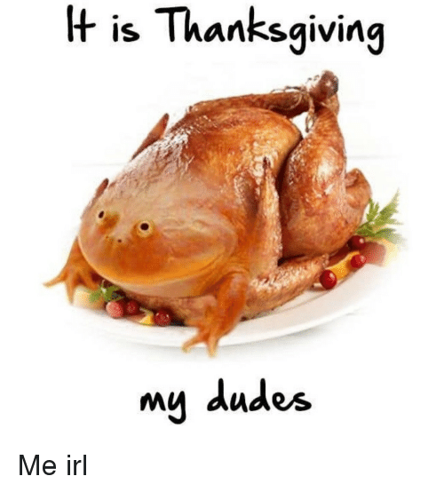 My Dudes: H is Thanksgiving  my dudes Me irl