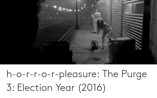 election: h-o-r-r-o-r-pleasure:  The Purge 3: Election Year (2016)