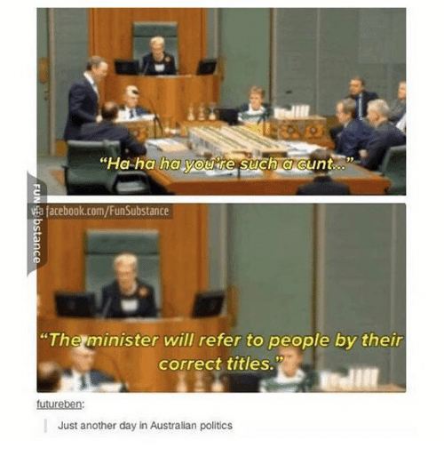 """Facebook, Ironic, and Politics: """"Ha ha ha youre such acunt  ta facebook.com/FunSubstance  """"The minister will refer to people by their  correct titles.  futureben  Just another day in Australian politics"""