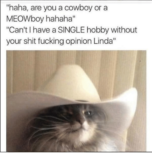 """Shit Fucking: """"haha, are you a cowboy or a  MEOWboy hahaha""""  """"Can't have a SINGLE hobby without  your shit fucking opinion Linda"""""""