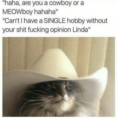 """Shit Fucking: """"haha, are you a cowboy or a  MEOWboy hahaha""""  """"Can't I have a SINGLE hobby without  your shit fucking opinion Linda"""""""