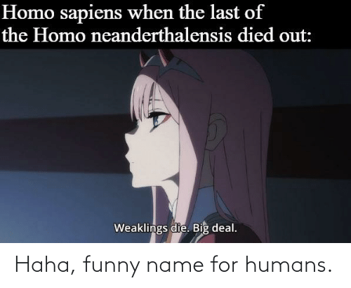 Funny Name: Haha, funny name for humans.