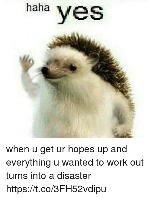 Funny, Work, and Haha: haha  yes when u get ur hopes up and everything u wanted to work out turns into a disaster https://t.co/3FH52vdipu
