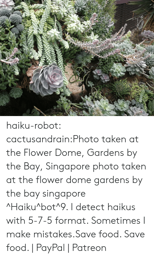 Food, Taken, and Tumblr: haiku-robot:  cactusandrain:Photo taken at the Flower Dome, Gardens by the Bay, Singapore  photo taken at the flower dome gardens by the bay singapore ^Haiku^bot^9. I detect haikus with 5-7-5 format. Sometimes I make mistakes.Save food. Save food. | PayPal | Patreon