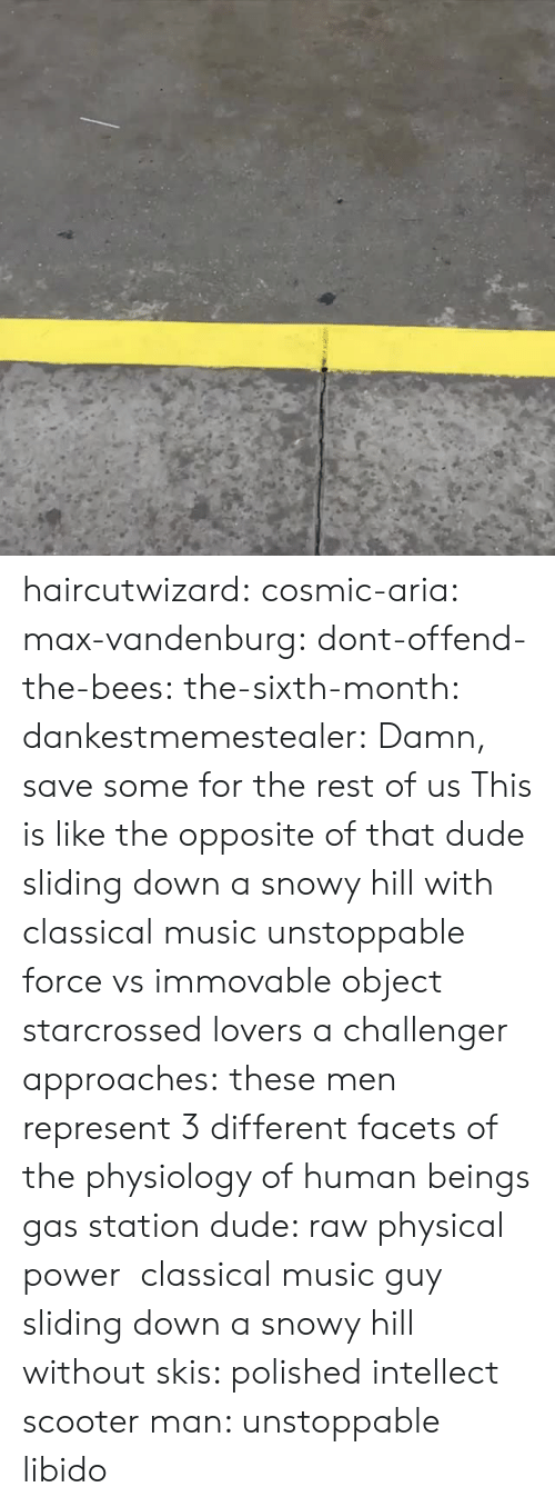 Dude, Music, and Scooter: haircutwizard:  cosmic-aria:  max-vandenburg:  dont-offend-the-bees:  the-sixth-month:  dankestmemestealer: Damn, save some for the rest of us This is like the opposite of that dude sliding down a snowy hill with classical music  unstoppable force vs immovable object  starcrossed lovers  a challenger approaches:  these men represent 3 different facets of the physiology of human beings gas station dude: raw physical power classical music guy sliding down a snowy hill without skis: polished intellect scooter man: unstoppable libido