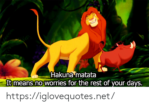 worries: Hakuna matata  It means no worries for the rest of your days. https://iglovequotes.net/