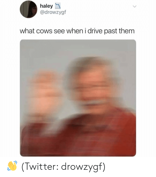 Twitter, Drive, and Dank Memes: haley  @drowzygf  what cows see when i drive past them 👋 (Twitter: drowzygf)