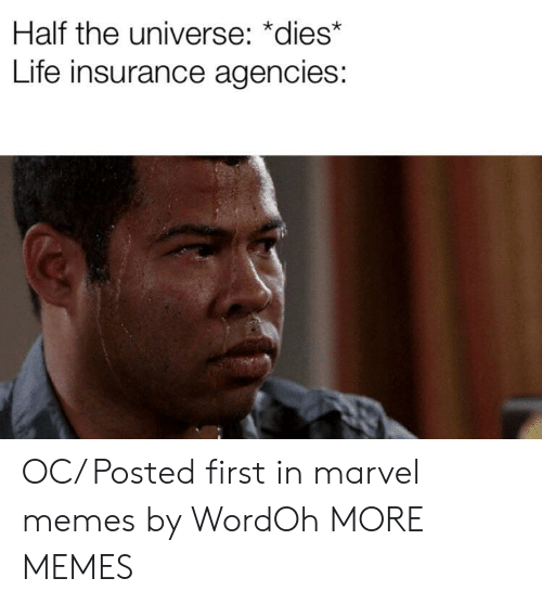 Dank, Life, and Memes: Half the universe: *dies*  Life insurance agencies: OC/ Posted first in marvel memes by WordOh MORE MEMES