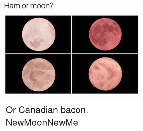 Memes, Moon, and Canadian: Ham or moon? Or Canadian bacon. NewMoonNewMe