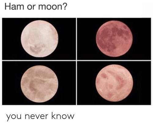 Moon, Never, and Ham: Ham or moon? you never know