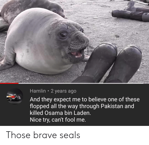 Pakistan: Hamlin 2 years ago  And they expect me to believe one of these  flopped all the way through Pakistan and  killed Osama bin Laden.  Nice try, can't fool me. Those brave seals