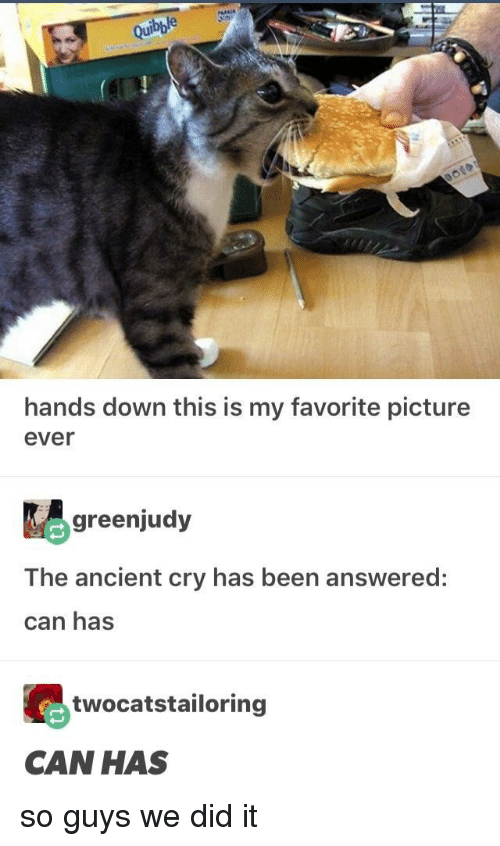 Ancient, Been, and Can: hands down this is my favorite picture  ever  greenjudy  The ancient cry has been answered:  can has  twocatstailoring  CAN HAS so guys we did it