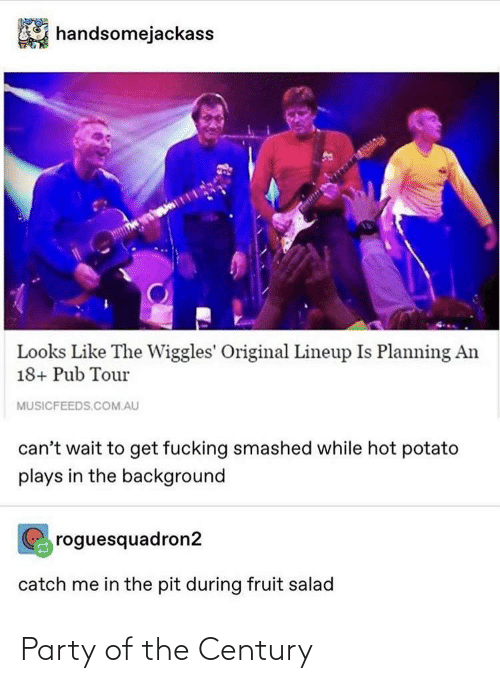 Potato: handsomejackass  Looks Like The Wiggles' Original Lineup Is Planning An  18+ Pub Tour  MUSICFEEDS.COM.AU  can't wait to get fucking smashed while hot potato  plays in the background  roguesquadron2  catch me in the pit during fruit salad Party of the Century