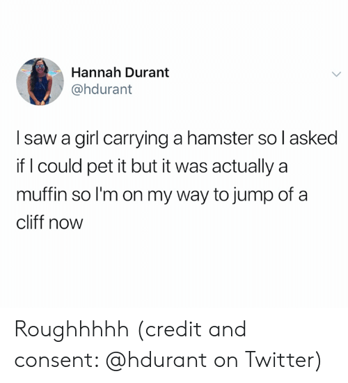 Saw, Twitter, and Girl: Hannah Durant  @hdurant  I saw a girl carrying a hamster so l asked  if I could pet it but it was actually a  muffin so I'm on my way to jump of a  cliff now Roughhhhh (credit and consent: @hdurant on Twitter)