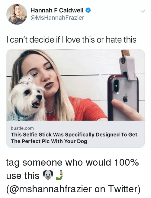 Anaconda, Love, and Memes: Hannah F Caldwell  @MsHannahFrazier  | can't decide if l love this or hate this  bustle.com  This Selfie Stick Was Specifically Designed To Get  The Perfect Pic With Your Dog tag someone who would 100% use this 🐶🤳(@mshannahfrazier on Twitter)