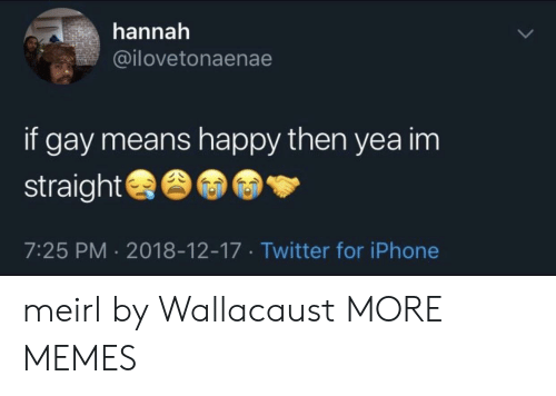 Dank, Iphone, and Memes: hannah  @ilovetonaenae  if gay means happy then yea im  straight  7:25 PM 2018-12-17 Twitter for iPhone meirl by Wallacaust MORE MEMES