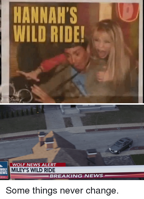 News, Breaking News, and Wild: HANNAH'SO  WILD RIDE!   WOLF NEWS ALERT  MILEY'S WILD RIDE  WOLF  EWS  NNEL  BREAKING NEWS Some things never change.