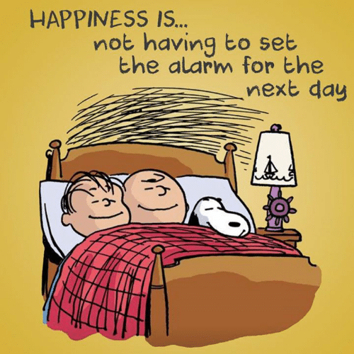 Memes, Alarm, and Happiness: HAPPINESS IS..  not having to set  the alarm for the  ,next day