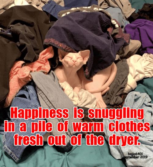 Dryer: Happiness is snuggling  in a pile of warm clothes  fresh out of the dryer  bajio6401  eptember 2019