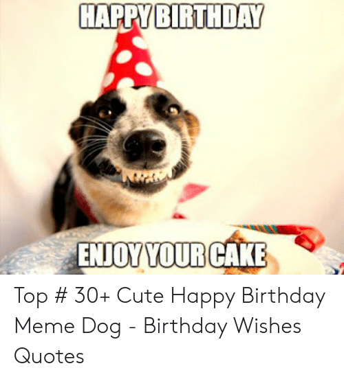 Birthday Cute And Meme HAPPY BIRTHDAY ENJOYYOURCAKE Top 30 Happy