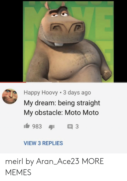 Aran: Happy Hoovy 3 days ago  My dream: being straight  My obstacle: Moto Moto  VIEW 3 REPLIES meirl by Aran_Ace23 MORE MEMES