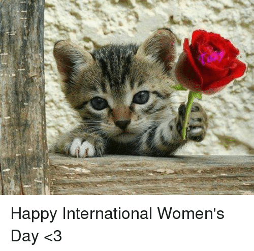 Memes, International Women's Day, and 🤖: Happy International Women's Day <3