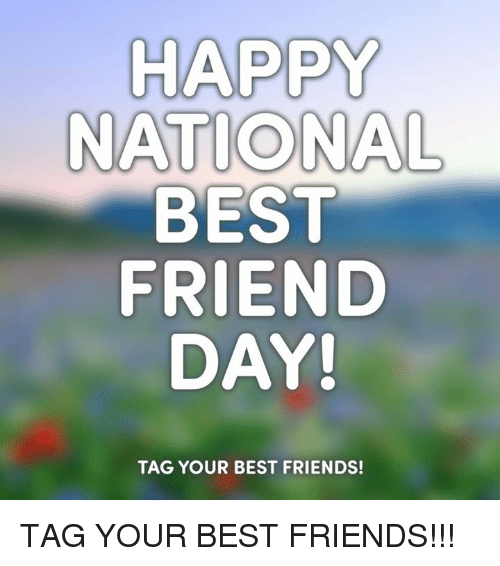 Best Friend, Friends, and Memes: HAPPY  NATIONAL  BEST  FRIEND  DAY!  TAG YOUR BEST FRIENDS! TAG YOUR BEST FRIENDS!!!