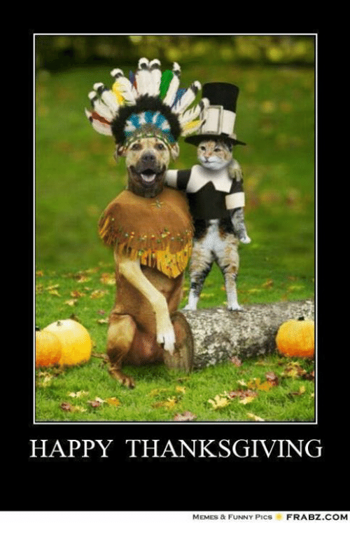 Memes, 🤖, and Funny Pic: HAPPY THANKSGIVING  MEMES & FUNNY PICs FRABZ.COM