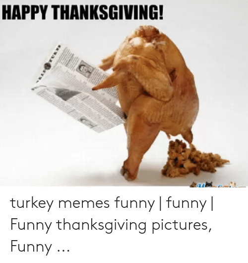 Funny, Memes, and Thanksgiving: HAPPY THANKSGIVING! turkey memes funny   funny   Funny thanksgiving pictures, Funny ...