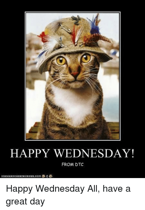 Happy Wednesday From Dtc Happy Wednesday All Have A Great Day Meme