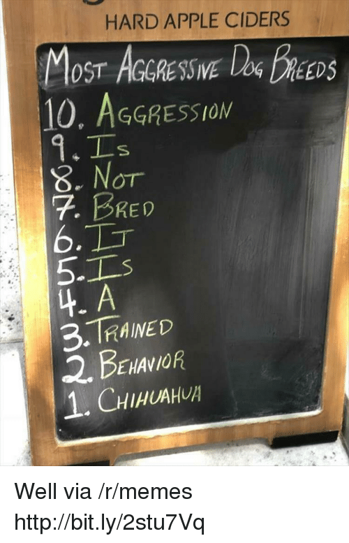 Apple, Memes, and Http: HARD APPLE CIDERS  OST AGGRESSIVE  10, AGGRESSION  DEEDS  8. Nor  7. BRED  6.  5-1  4. A  3.TRAINED  2. BENANOR  1.CHIHUAH Well via /r/memes http://bit.ly/2stu7Vq