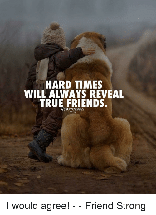 hard times: HARD TIMES  WILL ALWAYS REVEAL  TRUE FRIENDS.  DSUCCESSES I would agree! - - Friend Strong