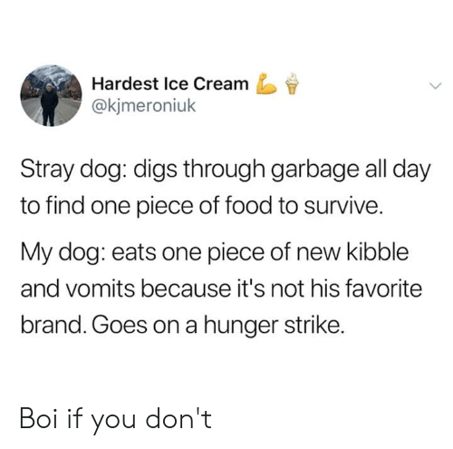 Dank, Food, and Ice Cream: Hardest Ice Cream  @kjmeroniuk  Stray dog: digs through garbage all day  to find one piece of food to survive.  My dog: eats one piece of new kibble  and vomits because it's not his favorite  brand. Goes on a hunger strike. Boi if you don't