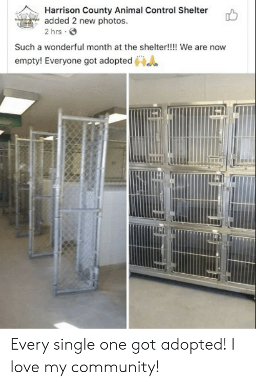 Community, Love, and Control: Harrison County Animal Control Shelter  added 2 new photos.  2 hrs  Such a wonderful month at the shelter!!!! We are now  empty! Everyone got adopted Every single one got adopted! I love my community!