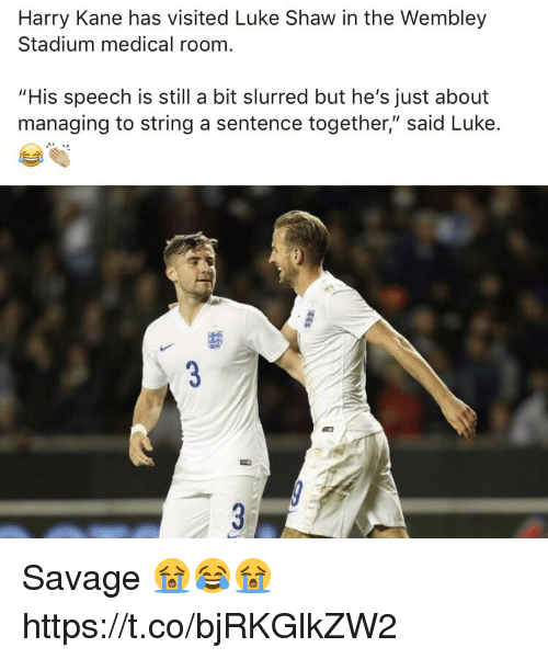 "Savage, Soccer, and Kane: Harry Kane has visited Luke Shaw in the Wembley  Stadium medical room  ""His speech is still a bit slurred but he's just about  managing to string a sentence together,"" said Luke. Savage 😭😂😭 https://t.co/bjRKGlkZW2"