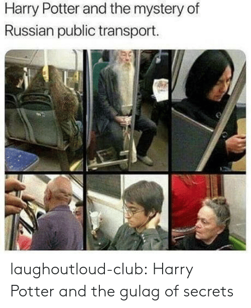 gulag: Harry Potter and the mystery of  Russian public transport. laughoutloud-club:  Harry Potter and the gulag of secrets