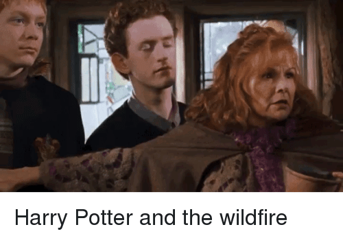MRW: Harry Potter and the wildfire