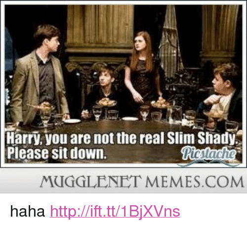 "The Real Slim Shady: Harry, you are not the real Slim Shady  Please sit down  MUGGLENET MEMES.COM <p>haha <a href=""http://ift.tt/1BjXVns"">http://ift.tt/1BjXVns</a></p>"