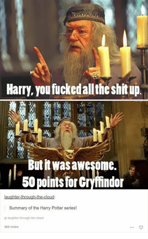 Harry Potter (Series): Harry, you fuckedallthe shitup  Butit wasawesome.  50 points for Gryffindor  Summary of the Harry Potter series!  laughter-through-the-cloud  668 notes