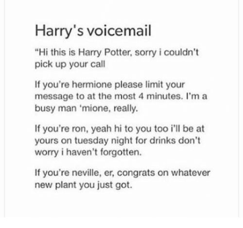 "Harry Potter, Hermione, and Sorry: Harry's voicemail  ""Hi this is Harry Potter, sorry i couldn't  pick up your call  If you're hermione please limit your  message to at the most 4 minutes. l'm a  busy man 'mione, really.  If you're ron, yeah hi to you too i'll be at  yours on tuesday night for drinks don't  worry i haven't forgotten.  If you're neville, er, congrats on whatever  new plant you just got."