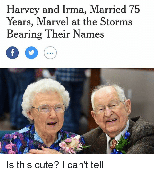 Cute, Marvel, and Girl Memes: Harvey and Irma, Married 75  Years, Marvel at the Storms  Bearing Their Names Is this cute? I can't tell