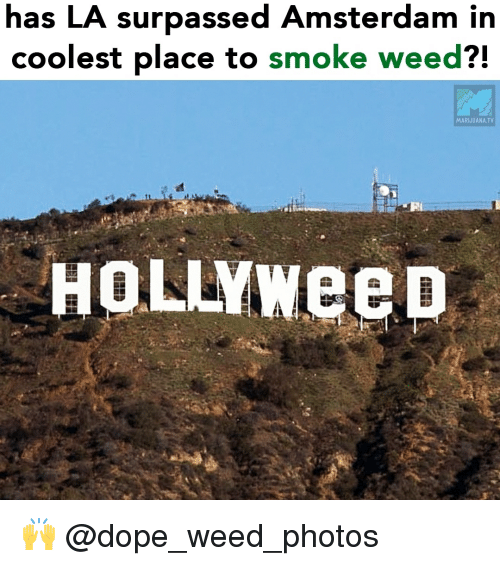 Amsterdam: has LA surpassed Amsterdam in  coolest place to smoke weed?!  MARIJUANA.TV  HOLLYweep 🙌 @dope_weed_photos