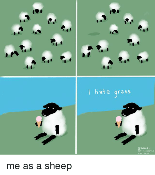 Memes, 🤖, and Sheep: | hate arass  SAMIR.  NATHANWPLE me as a sheep