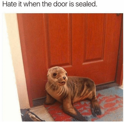 Memes, 🤖, and The Doors: Hate it when the door is sealed.