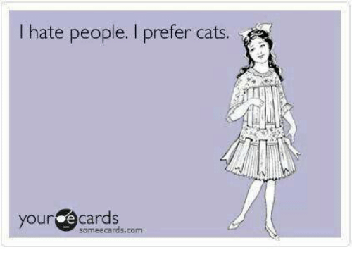 Hateness: hate people. I prefer cats.  your e cards  someecards, com