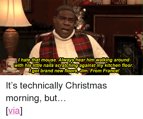 "Christmas, Target, and Tracy Morgan: hate that mouse. Always hear him walking around  with his little nails scratchingagainst my kitchen floor.  got brand newfloors,Jim. From France! <p>It's technically Christmas morning, but…</p> <p>[<a href=""http://www.buzzfeed.com/whitneyjefferson/tracy-morgan-reads-twas-the-night-before-christma"" target=""_blank"">via</a>]</p>"